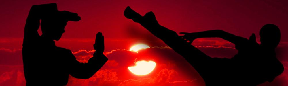 Erfolgreiche Kommunikation durch die Macht des Kung Fu