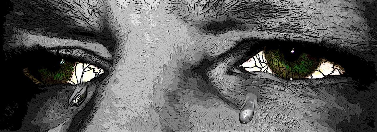 Emotionale Führung - Wenn Mitarbeiter in Tränen ausbrechen