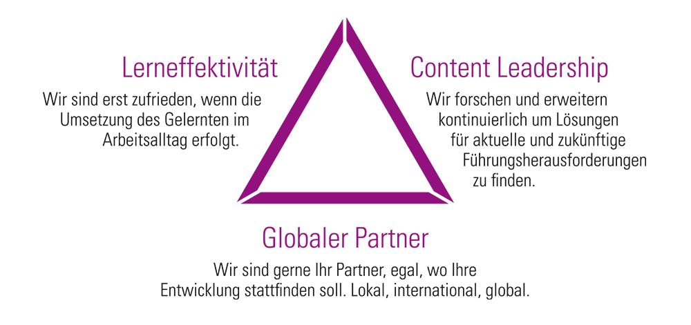 Lerneffektivität-Content Leadership-Globaler Partner