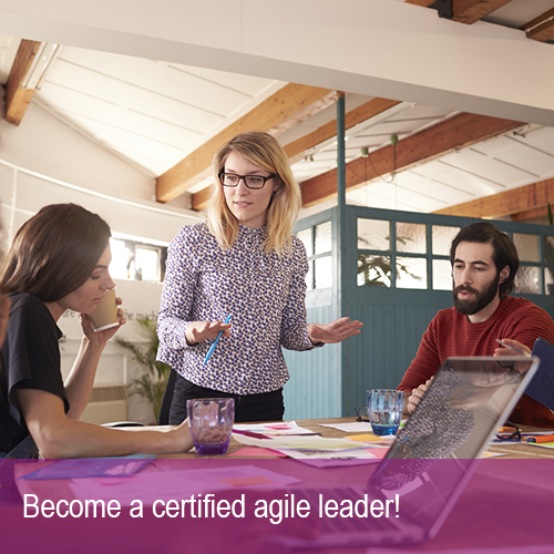 Agile leadership course
